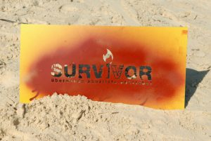 Image Survivor 2007